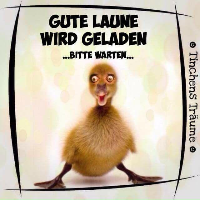 Pin von Patricia Oosterveen auf Humor   Witzige sprüche ...