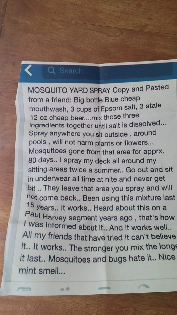 DIY Yard Bug Spray