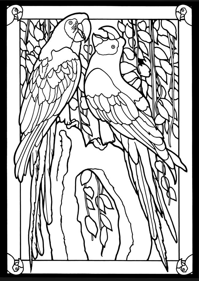 Beautiful Birds in Mated Pairs Stained Glass Coloring Book Dover ...