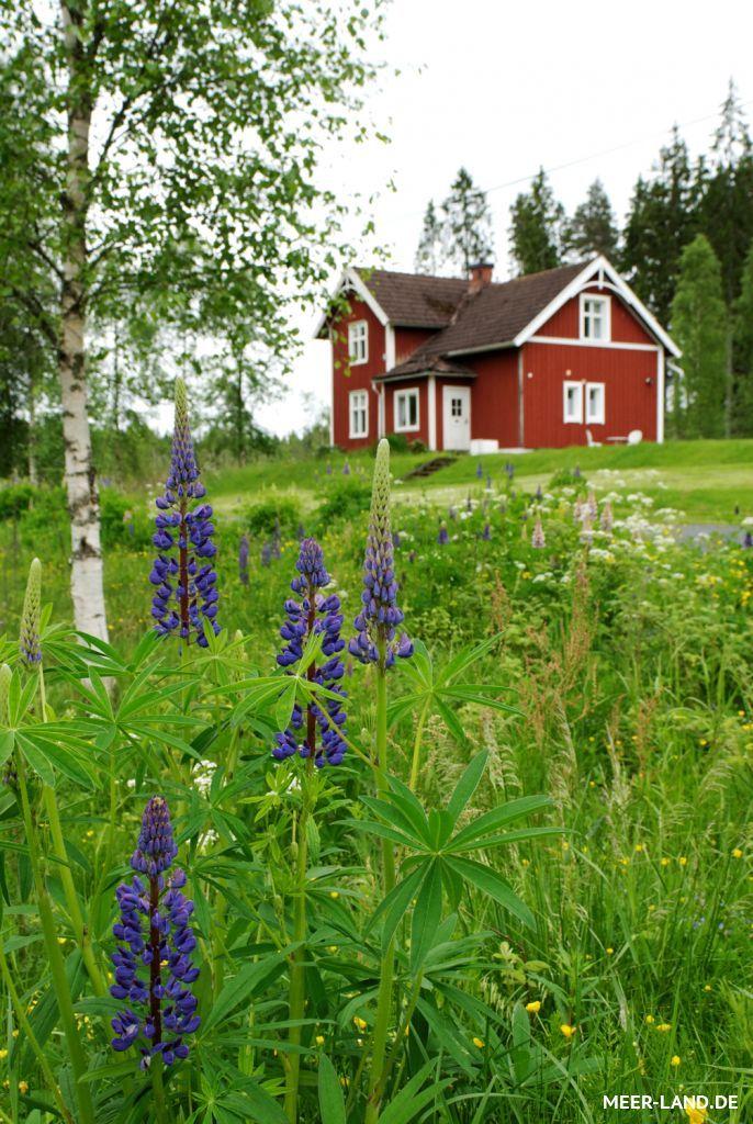 Www Meer Land De Galerie Nature Norwegen Haus Schwedisches Haus Rote Hauser
