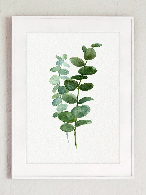 Silver Dollar Eucalyptus Leaves Green Blue Leaf Watercolor