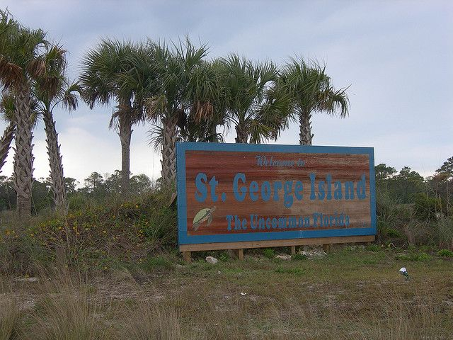 Welcome To St George Island Saint George Island And Vacation