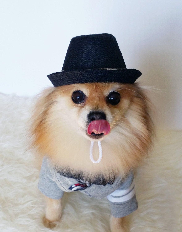 8dfd8bf118b HANDMADE dog hats