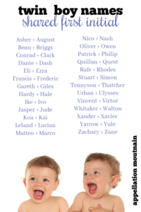 Twin Boy Names Shared First Initial Appellation Mountain Southern Baby Names Twin Names Twin Boy Names