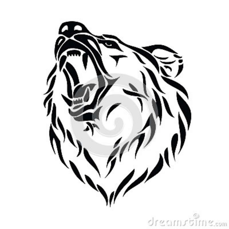 Grizzly Bear Head Dessin Ours Tatouage Ours Dessins Tribaux