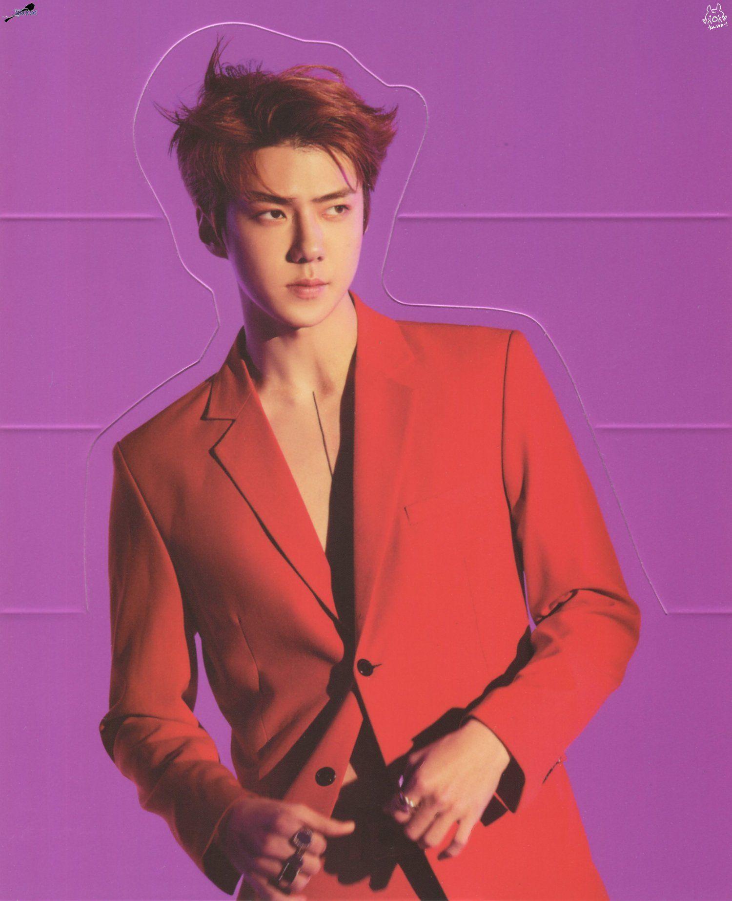 EXO LOVE SHOT 홀로그램 포토카드 세트 굿즈 스캔 엑소 러브샷 Hologram PhotoCard ...