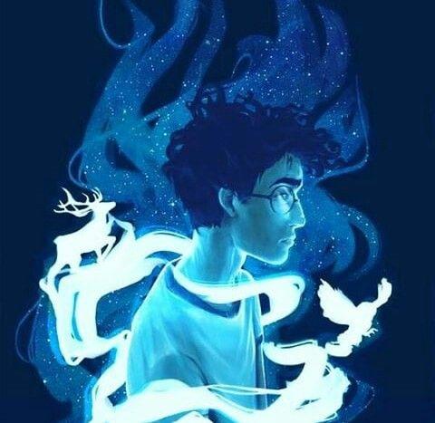 Pin by Liannette Morris on Harry Potter Love | Harry ...