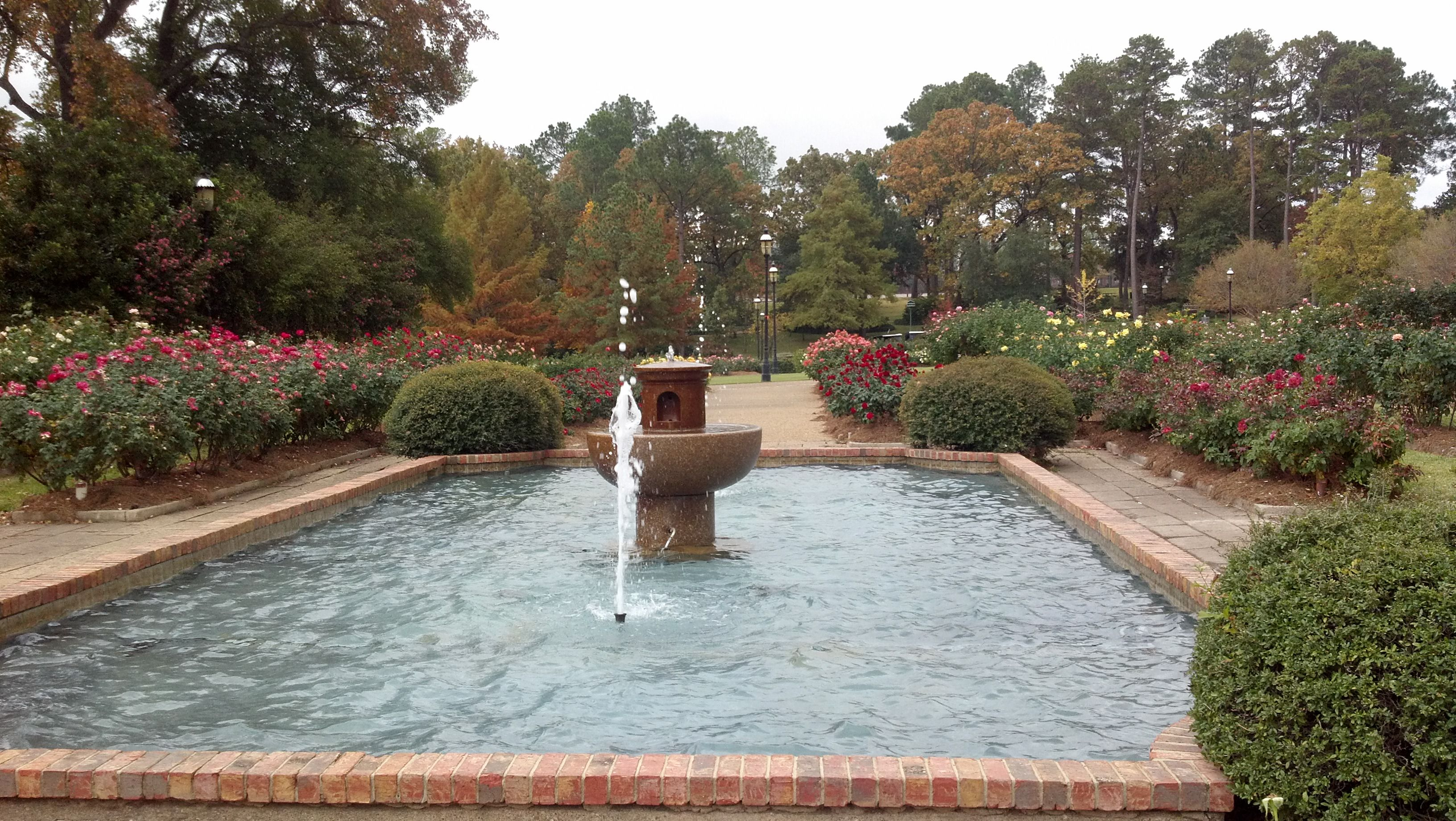 Rose Garden in Tyler, Texas. Wedding themes, Our wedding