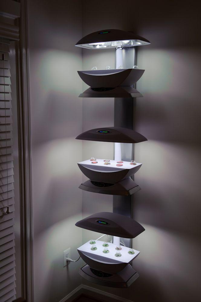 Double Aerogarden wall mount | Aerogarden, Hydroponic ...