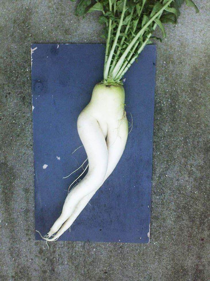 Erotic fruit and veggies