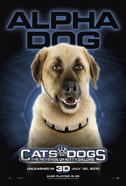 Theatrr Com Dogs Dog Cat Dog Films