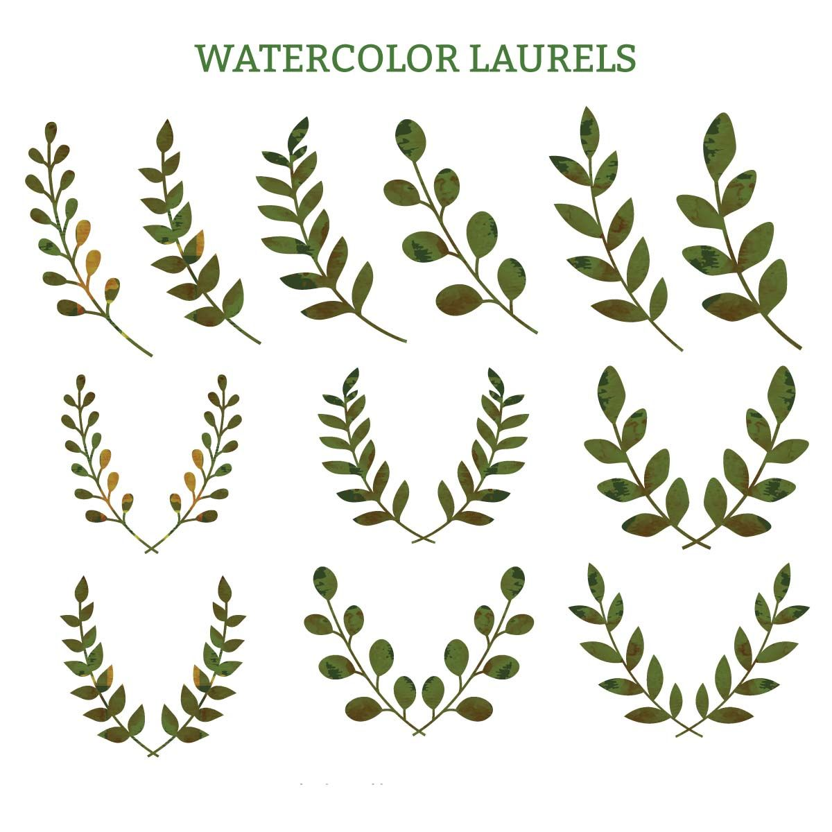 Watercolor Laurels Green Decorative Vector Wreath Watercolor