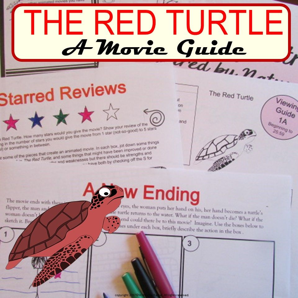 The Red Turtle Movie Guide The Red Turtle Turtle Activities Movie Guide