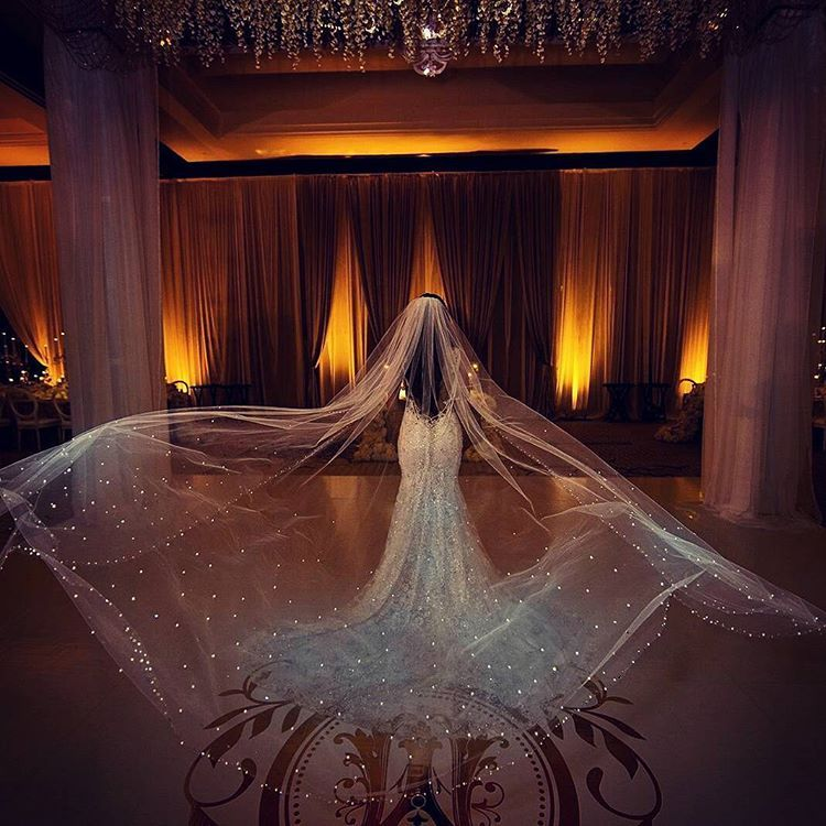 Amazing Wedding Veil With Scattered Crystals Throughout