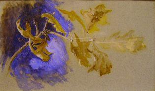 John Ruskin: Oak leaves