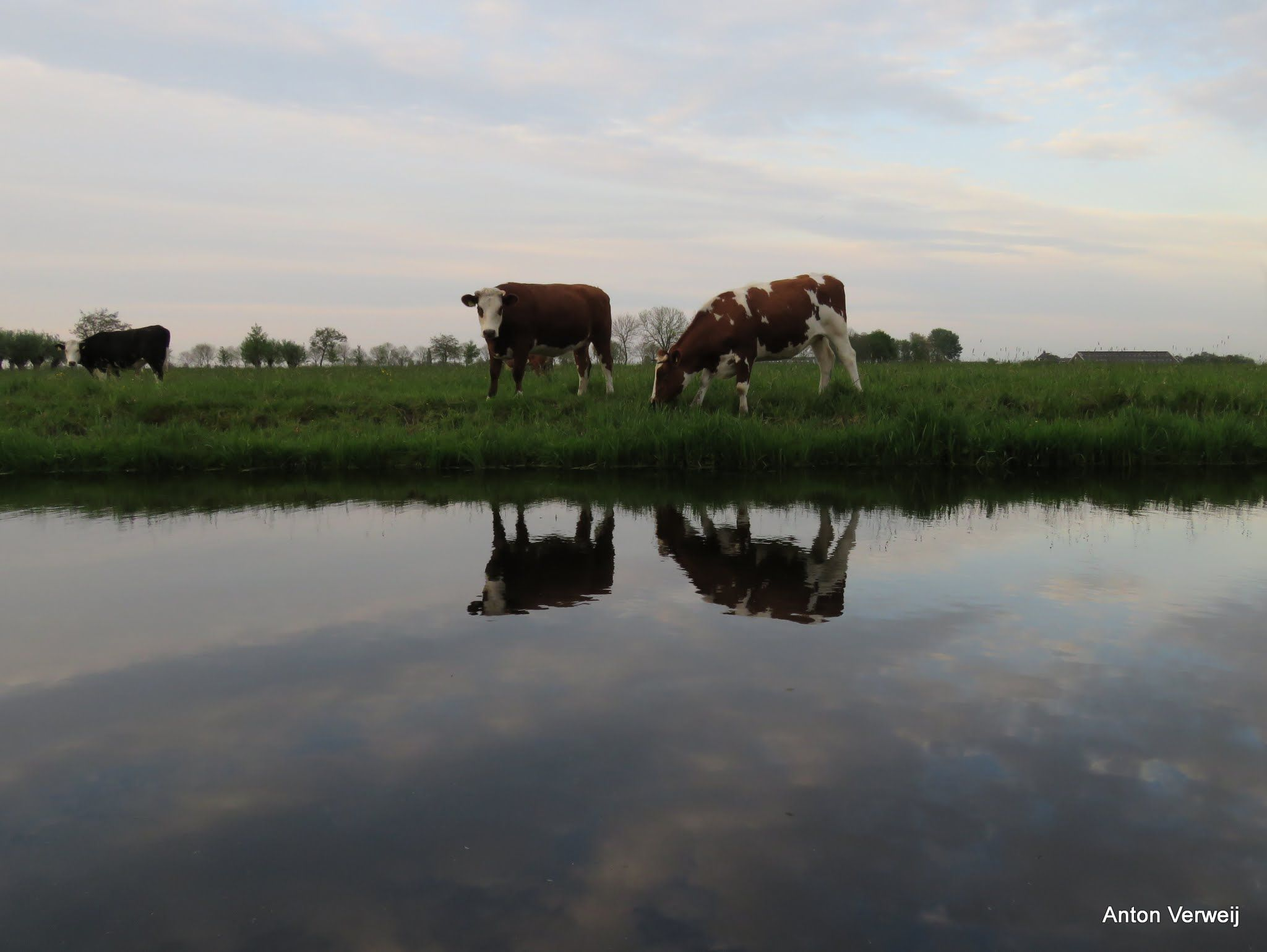 Van de weersomstuit ... http://godisindestilte.blogspot.nl/2016/05/van-de-weersomstuit.html