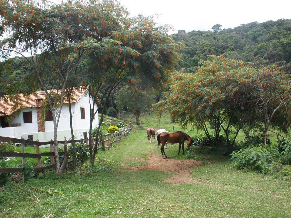 Mais Fotos Lindas Fazenda Recanto Do Paraíso Maravilhas Do