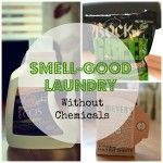 Smell-Good Laundry Without Chemicals