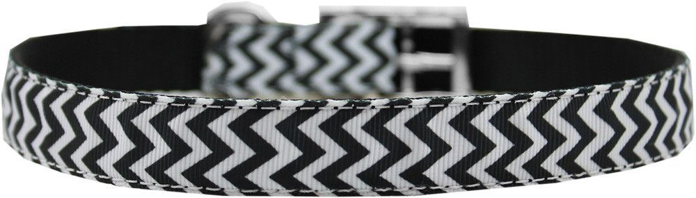 "3/4"" Nylon Buckle Collars"