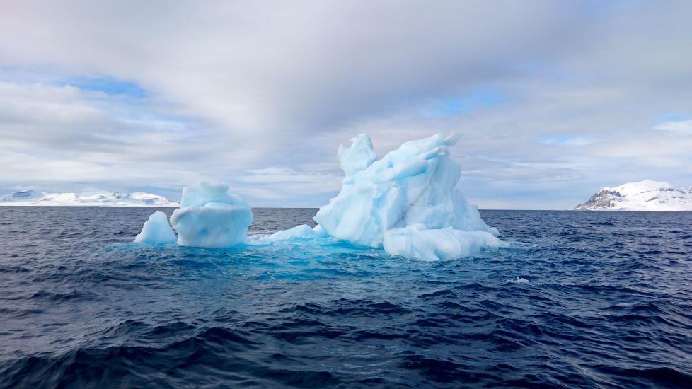 HØYDEPUNKT: «Jeg tror begges høydepunkt var å se det isfjellet, det var så majestetisk og flott der det lå og ruvet i vannet,» forteller Marianne. Bildet er tatt med testpilotenes Sony Xperia Z3 .