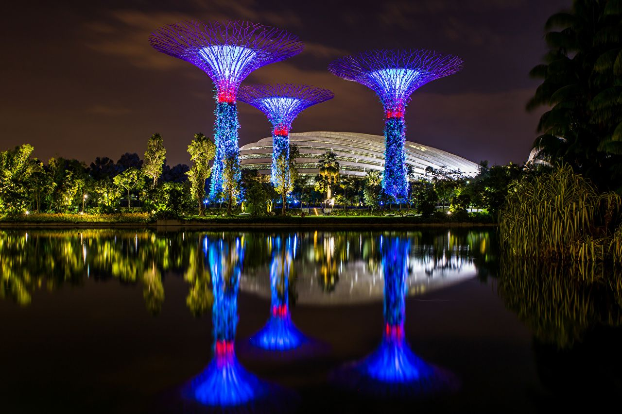 e22deded8b6927a9ed8873bc31a1d3e0 - Gardens By The Bay Singapore On Budget