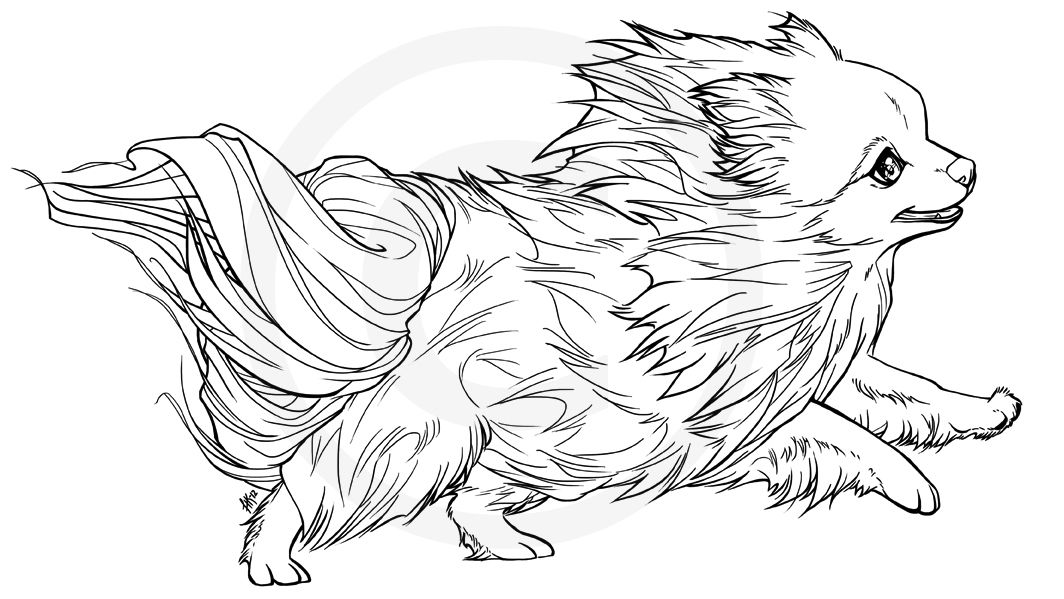 Mini the Pomeranian -lineart (not free to use)- by henu on deviantART