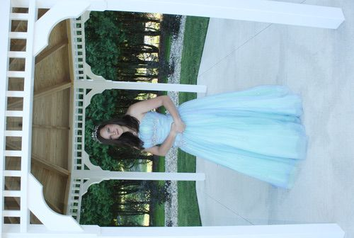 Under 200$ cheap plus size ball gowns prom dresses