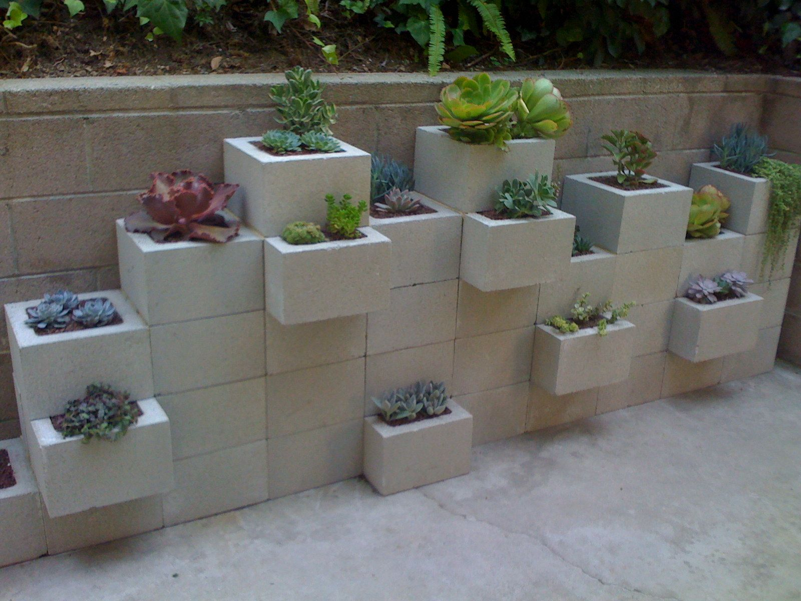 using cinder blocks to make a planter for succulents or. Black Bedroom Furniture Sets. Home Design Ideas
