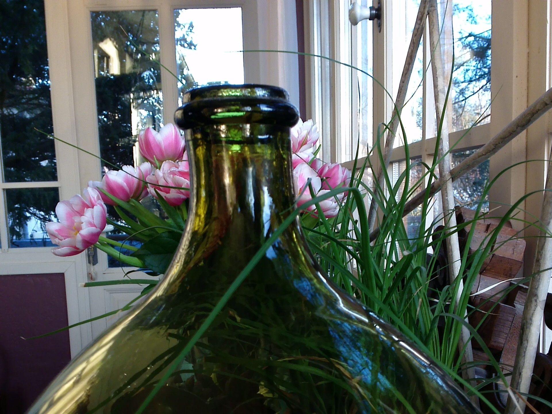 Quelques tulipes