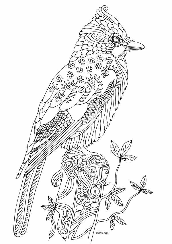 mandala coloring pages birds - photo#12