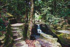 De Magische Tuin : Afbeeldingsresultaat voor magische tuin backgrounds