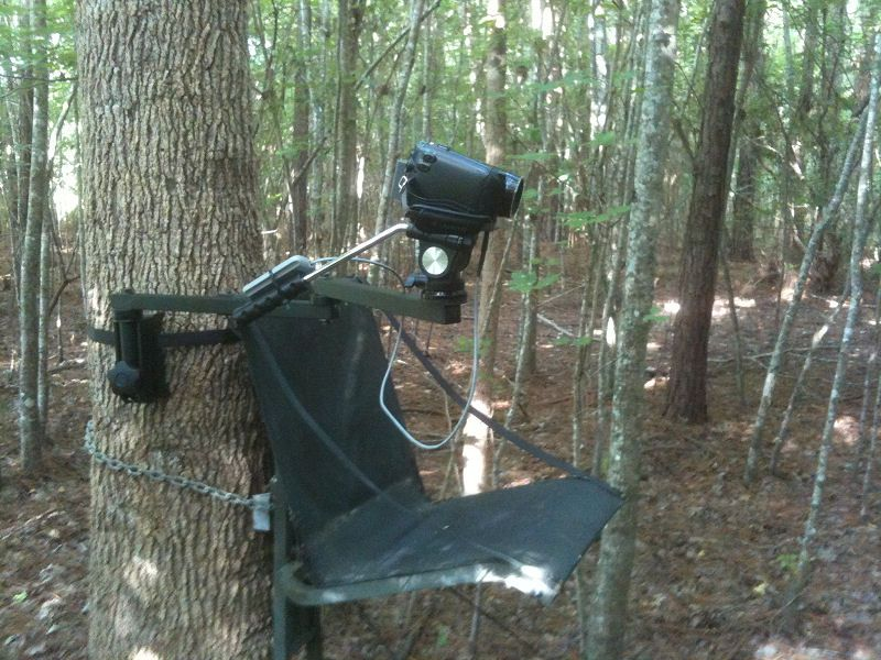 5 Best Video Camera For Hunting Hunting, Cool gifs