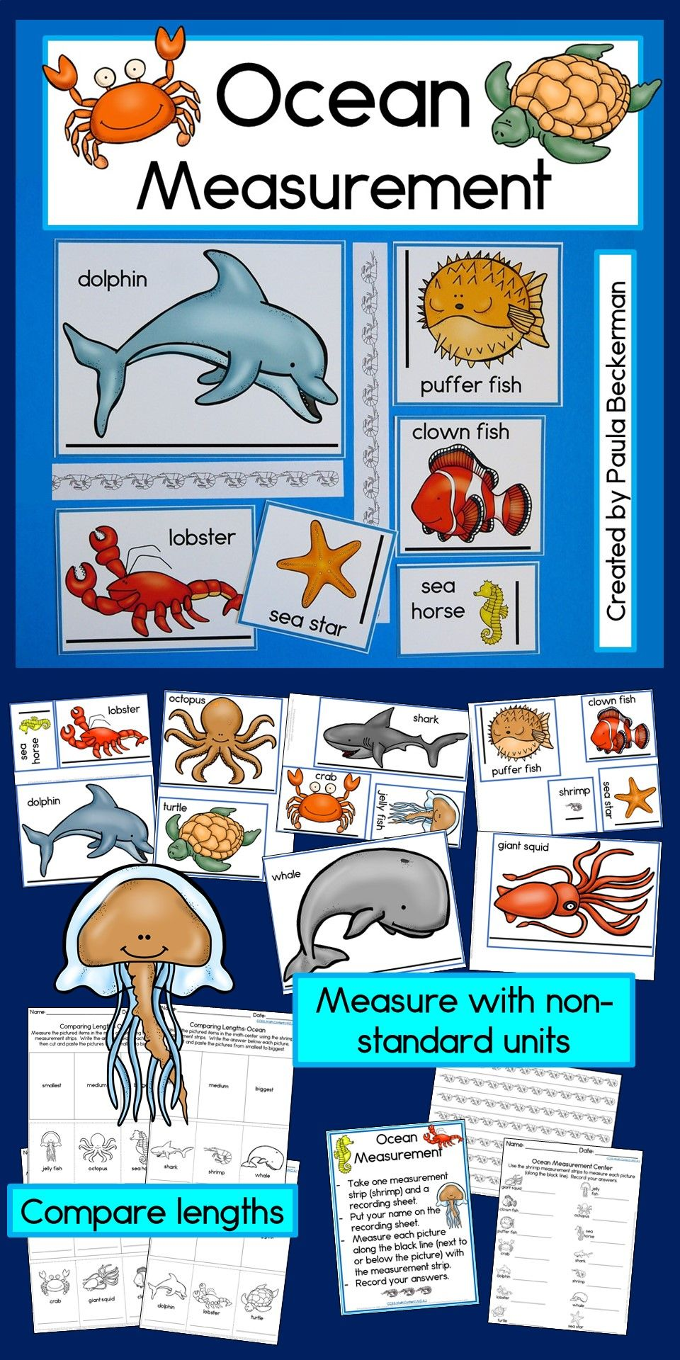 Gorgeous Ocean Animals To Measure With Non Standard Units What A Fun First Grade Math Activity Ocean Theme Preschool Ocean Animals Preschool Ocean Activities [ 1920 x 960 Pixel ]