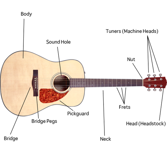 Lesson 1: Parts of an Acoustic Guitar   Learn guitar ...
