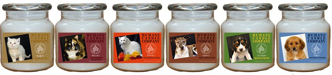 The goal of the Avery County Humane Society is to help our