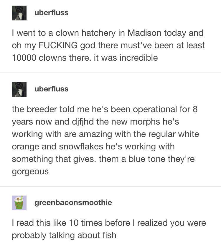 I Was So Confused Tumblr Funny Really Funny Funny Quotes