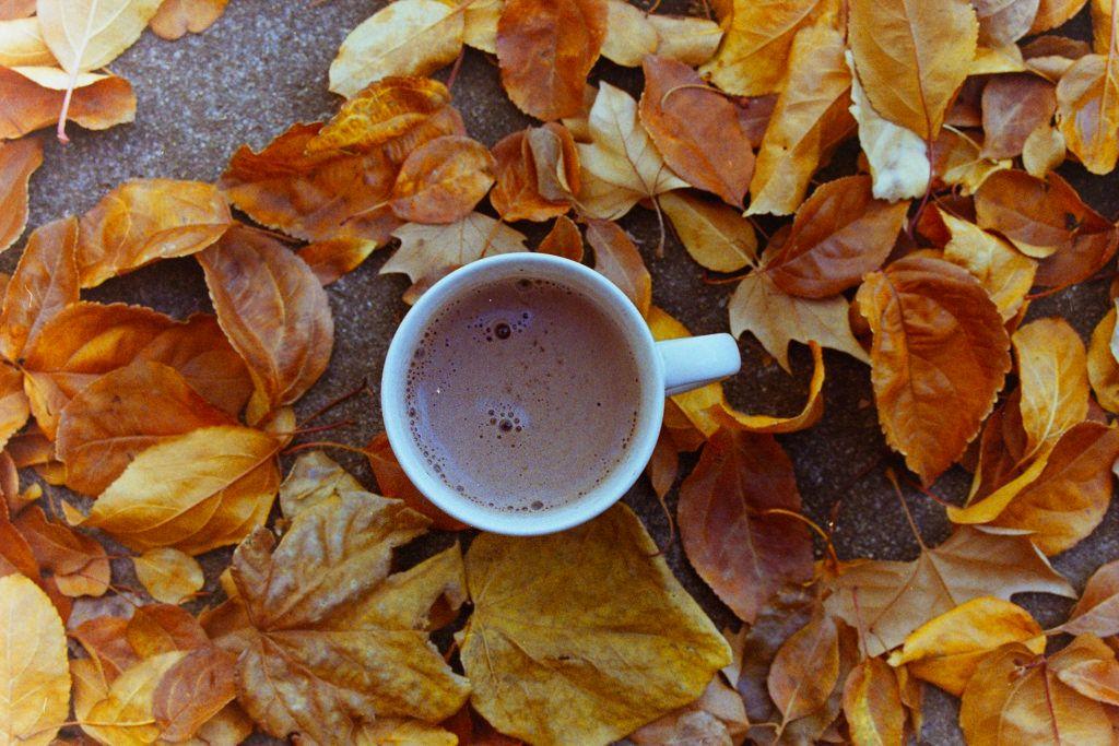 Картинка фото чая на фоне осенних листьев