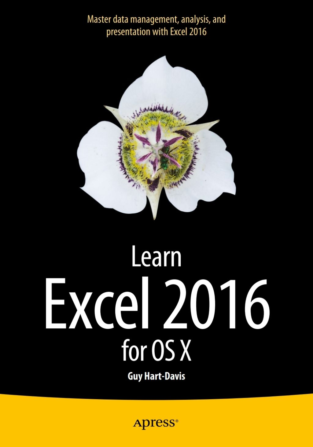 Learn Excel 2016 for OS X (eBook) | Products | Learning, Pdf