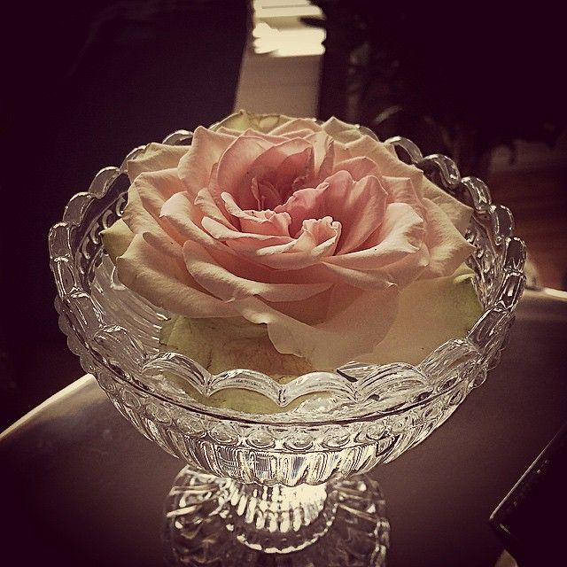 #ShareIG 〰 Rose 〰 #rose #interior #interiør #interior125 #interior4you1 #floriss #eleganceroom #classyinteriors