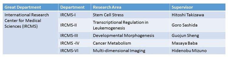 IRCMS Biomedical Research Fellowship for International