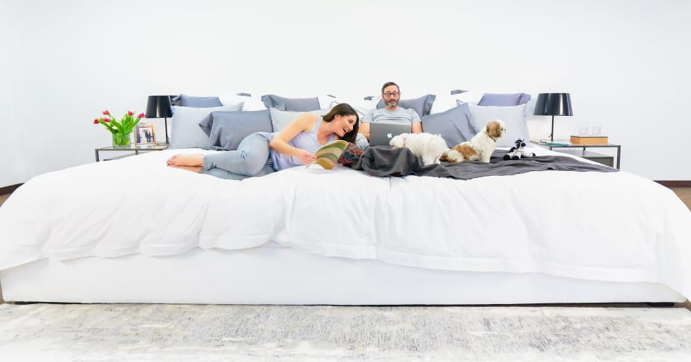 This Family Sized Mattress Is Literally 12 Feet Wide So Go Ahead And Adopt 5 More Dogs In 2020 Master Bedroom Diy Giant Beds Wallpaper Decor Bedroom