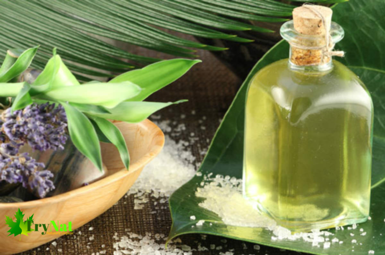 Uses of Eucalyptus Oil is native to Australia which grows