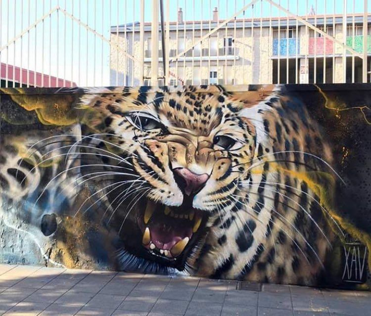 New Street Art By Xav In Gijon Asturias Spain Art Mural Graffiti