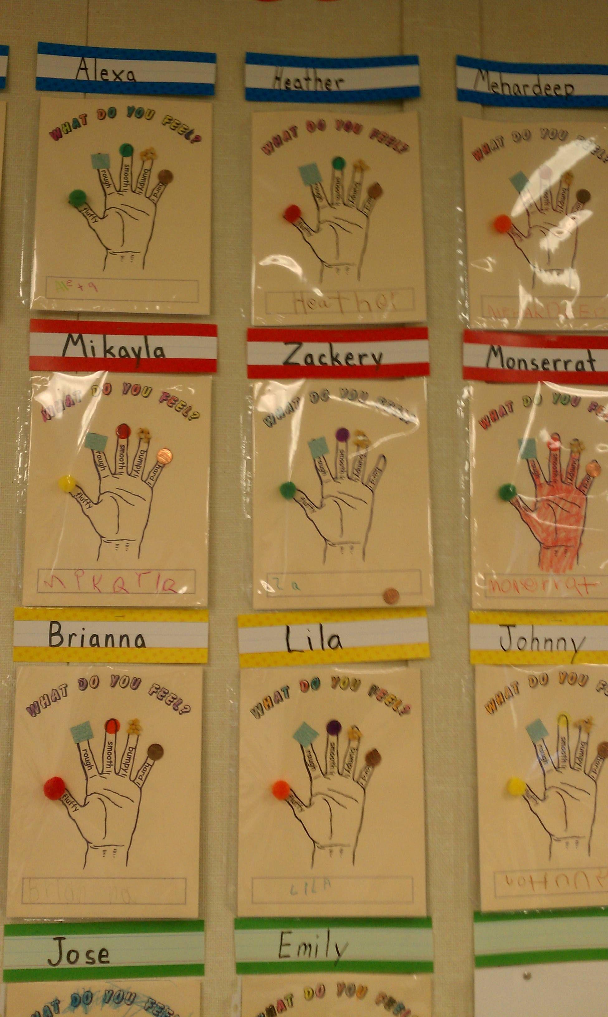 Imgur Post - Imgur | Senses preschool, Five senses ...