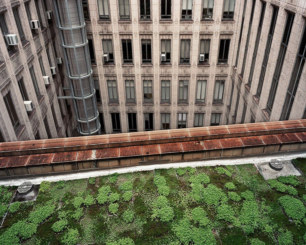 Gorgeous Photos Of The Rooftop Gardens Hiding High Above Our Heads Rooftop Garden Green Roof Garden Modern Garden