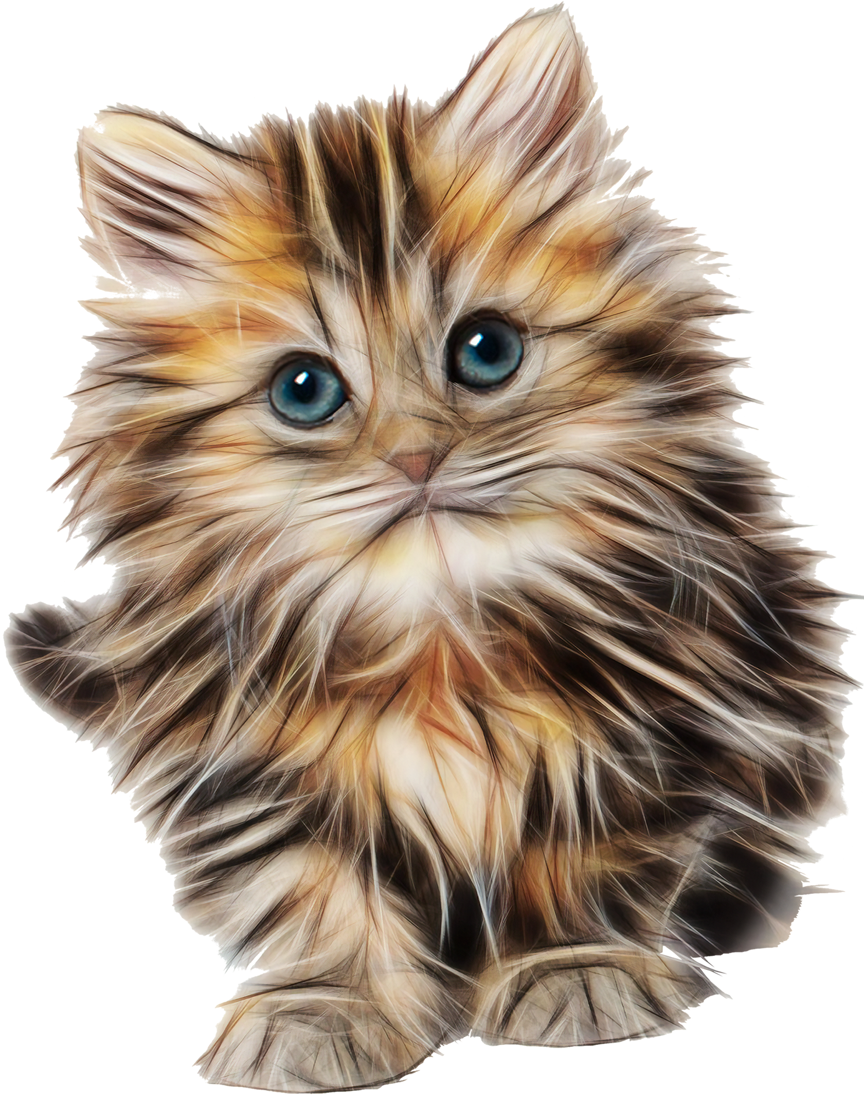 Kitten On Transparency Fluffy Kittens Kittens Cutest Kittens Gifts