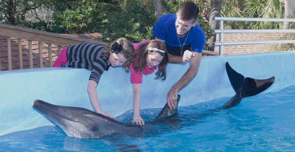 Gulf World Marine Park In Panama City Beach Florida Panama City Panama Dolphin Encounters Panama City Beach