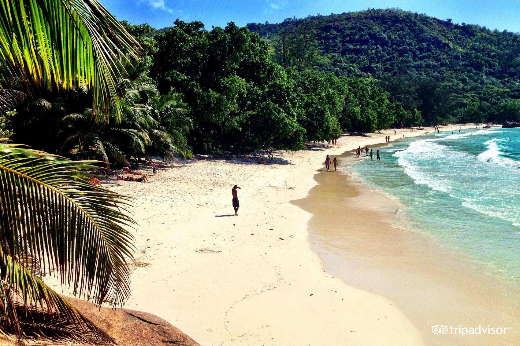 Anse Lazio (Praslin Island, Seychelles) | Island, Beach ...