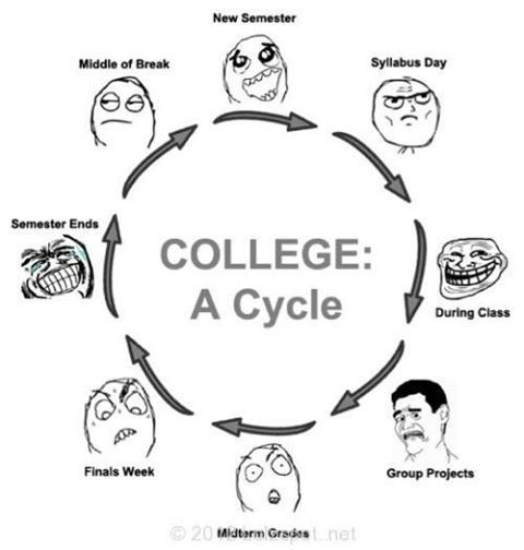 hahahaha college cycle student study love books assignments  explore school life college life and more