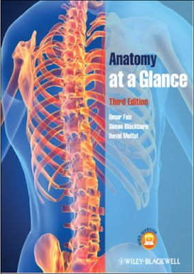 Anatomy At A Glance 3rd Edition Pdf Omar Faiz Simon